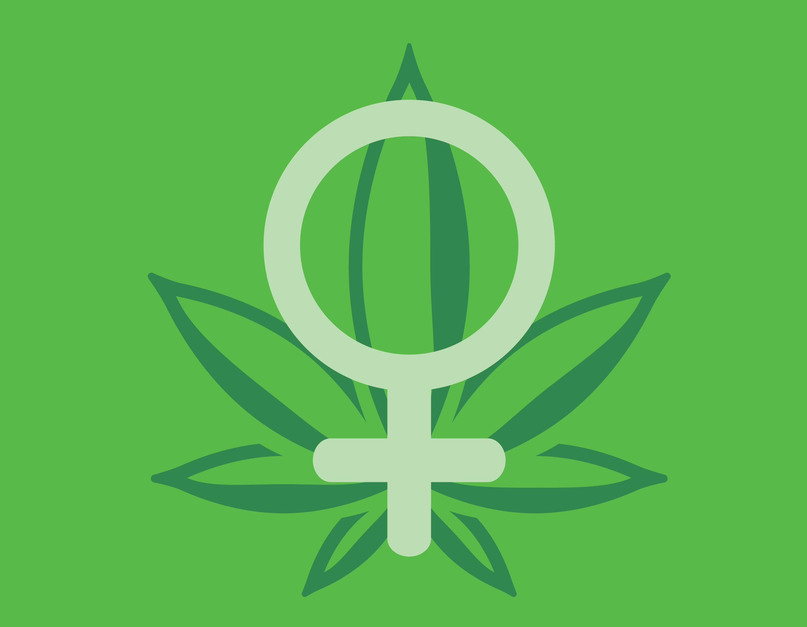 femme cannabis marijuana goûts des consommateurs préférences royale graines de reine préférée