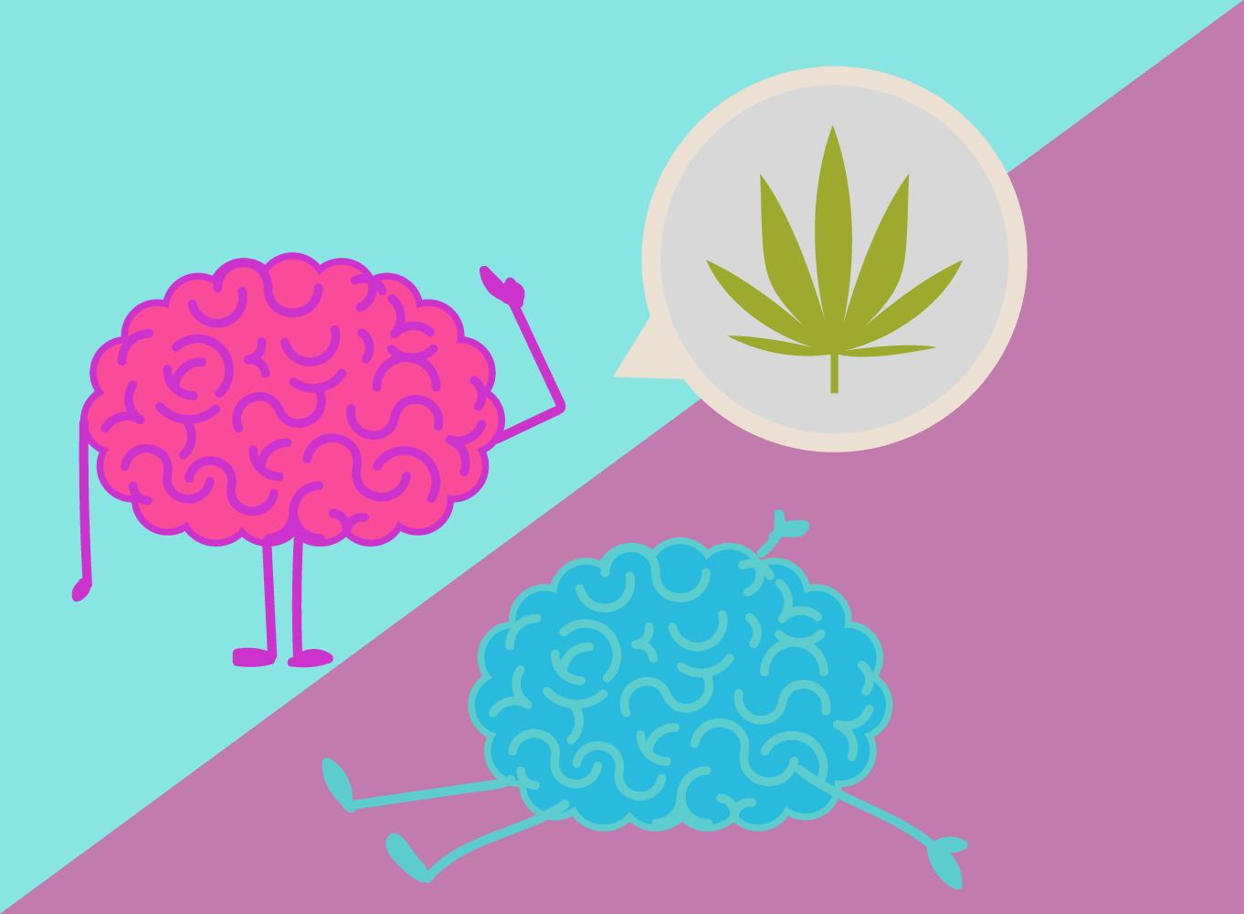 réactions femme cannabis homme THC biochimie effets œstrogène de testostérone