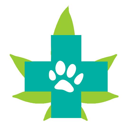 Cannabinoïdes système endocannabinoïde animaux chiens anxiété feux d'artifice