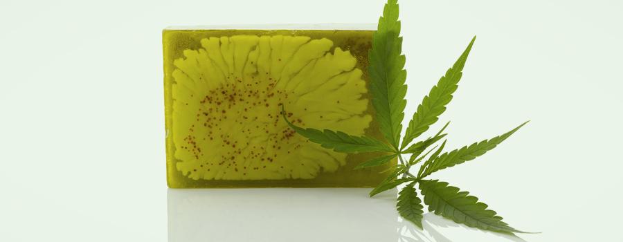 Cannabis des produits de santé