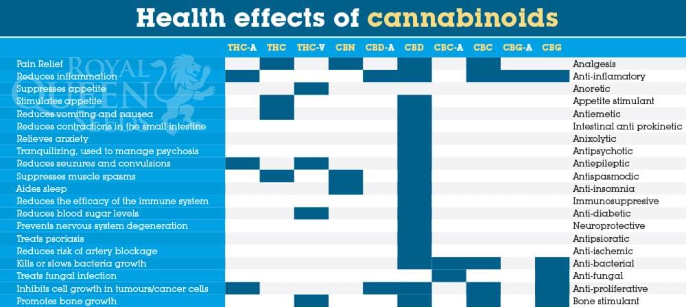 Cannabis et Fibromyalgie