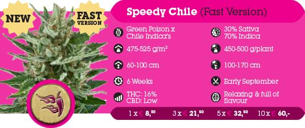 Speedy Chile