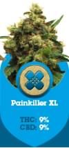 Painkiller XL CBD high cannabis