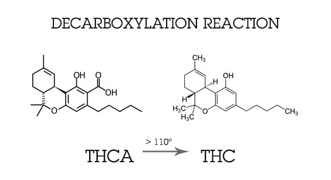 décarboxylation CANNABIS