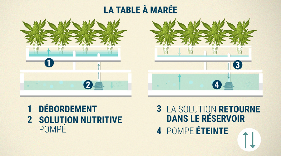La Table À Marée (Ebb & Flow)