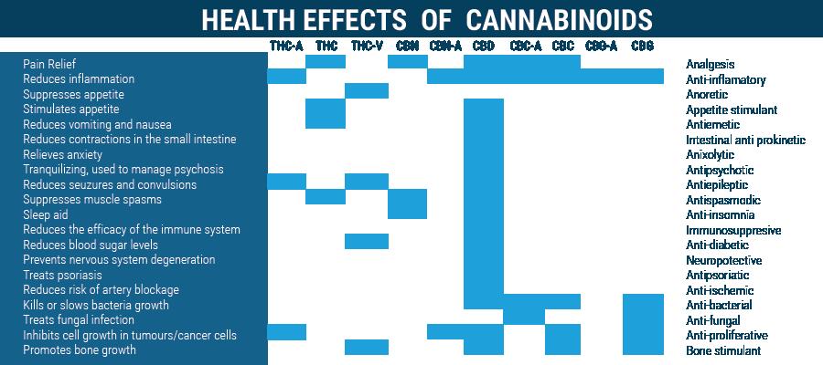 Effets sur la santé des cannabinoïdes que la CDB et le THC