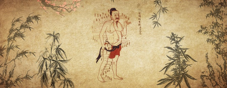 Cannabis En Médecine Traditionnelle Chinoise Acupuncture