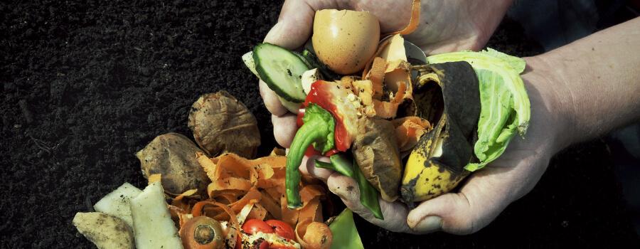 faire du composte maison Faire Du Compost Maison