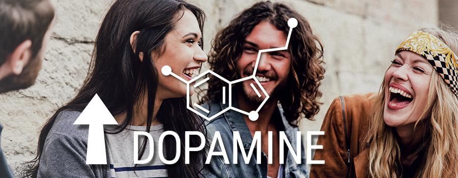 Cannabis Dopamine Sérotonine