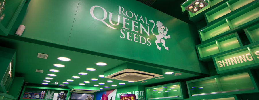 Royal Queen Seeds boutique Barcelona Pelai