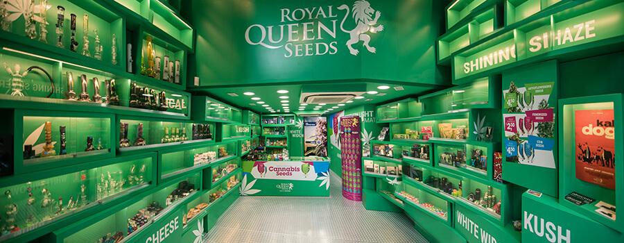Boutique de graines de cannabis Royal Queen Seeds à Barcelone