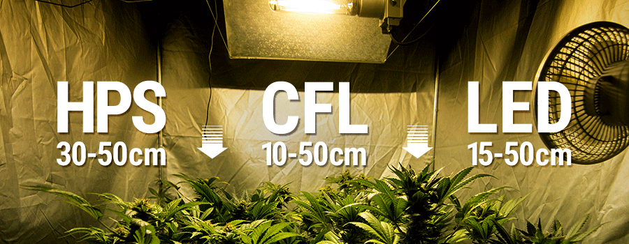 Guide du cultivateur de weed en int rieur pour les for Installation cannabis interieur