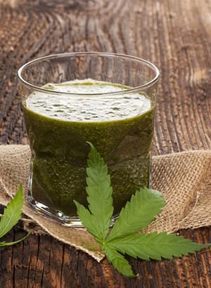 Cannabis Smoothie Cru
