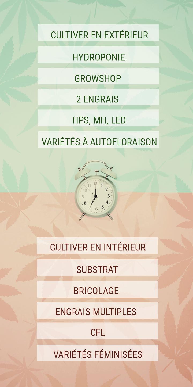 Quelques conseils pour économiser le temps des cultivateurs de cannabis