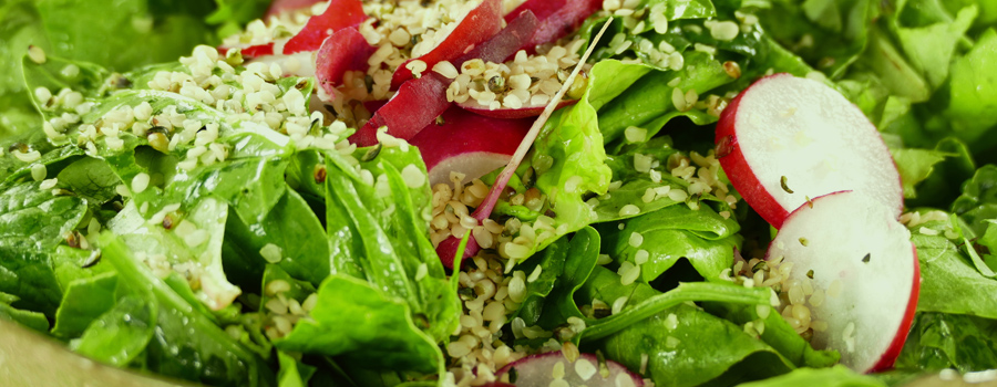 Salade De Sucre Brut