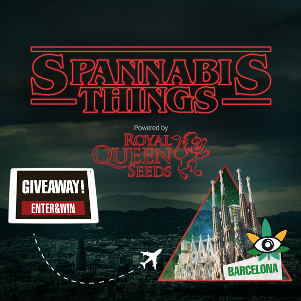 spannabis raffle things royal queen seeds