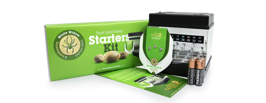 Starter Kit Autofloraison Royal Queen Seeds