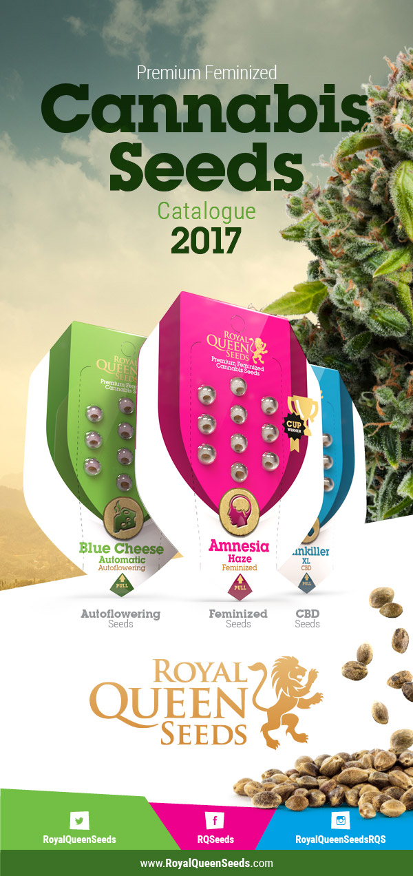 catalogue de graines de cannabis