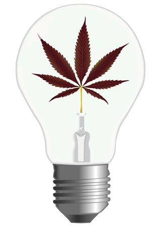 Générez Propre Éléctricité Culture Cannabis