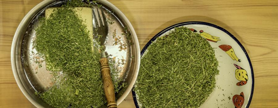 Cannabutter recette de cannabis thé