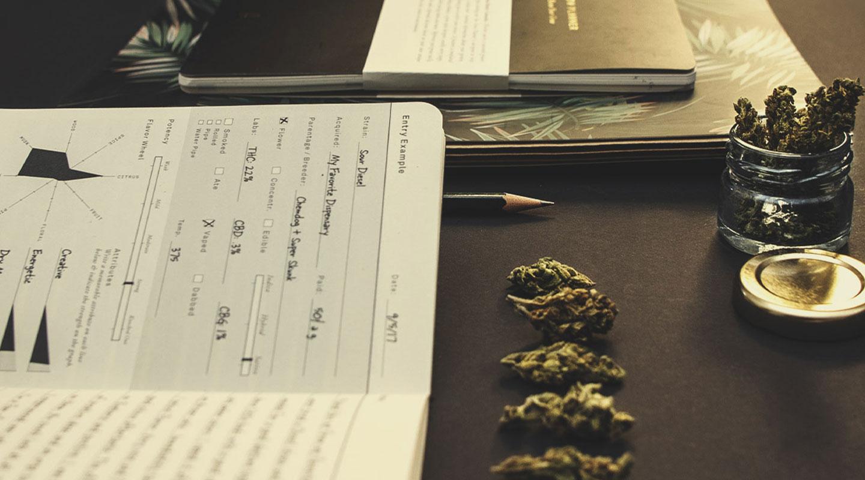 Le cannabis fait-il perdre le contrôle ? Est-ce qu'on reste conscient de ce qui se passe autour de soi ?