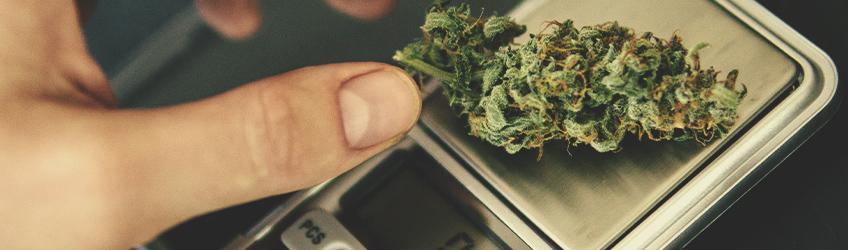 Vous Pouvez Faire Une Overdose De Cannabis
