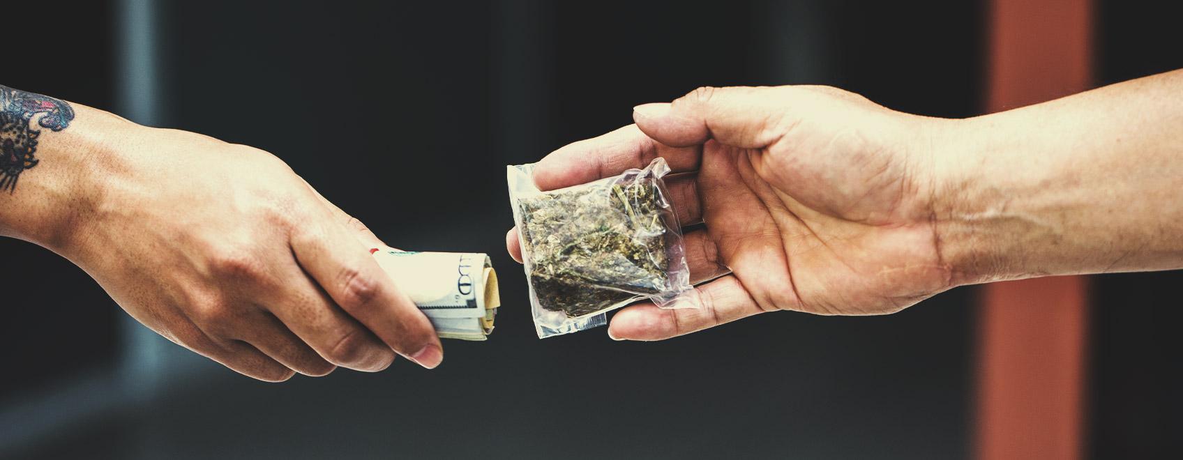 Les gens ont-ils vraiment à cœur de savoir d'où le cannabis qu'ils consomment provient?