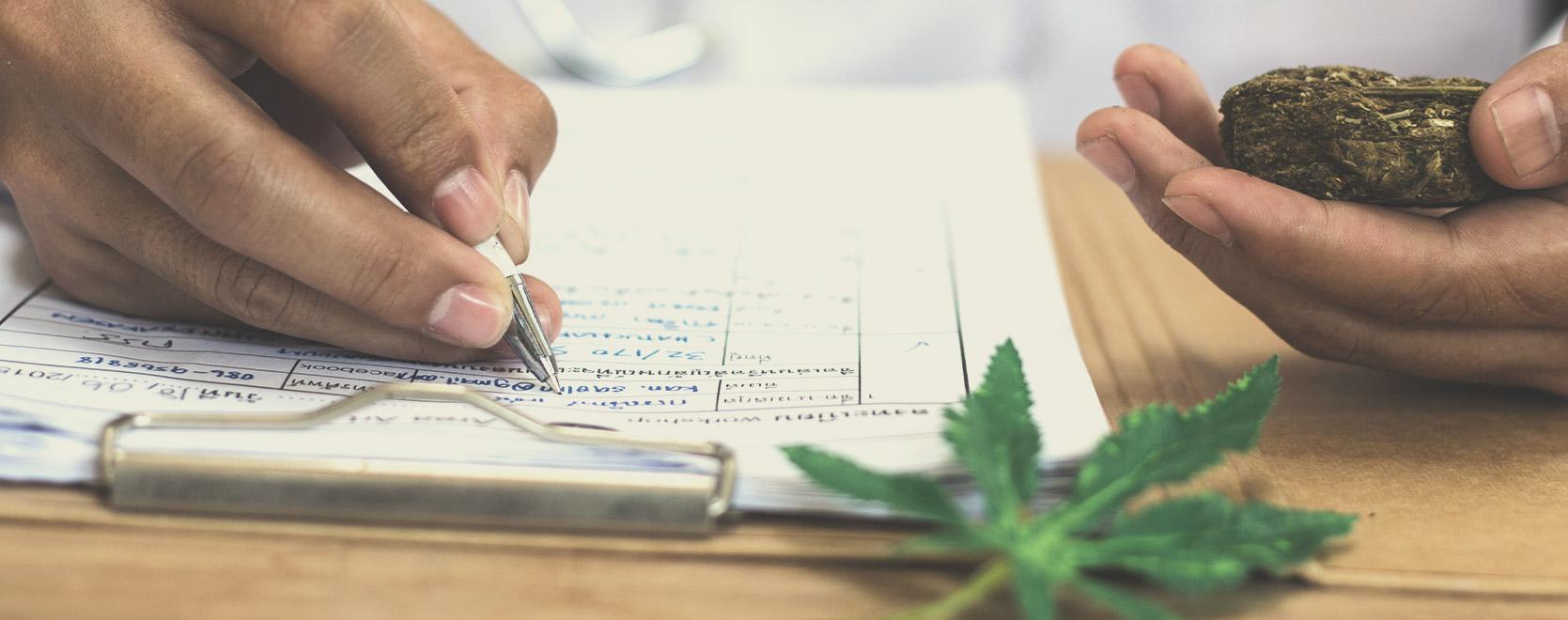 L'importance de la teneur en THC pour les cultivateurs et les consommateurs