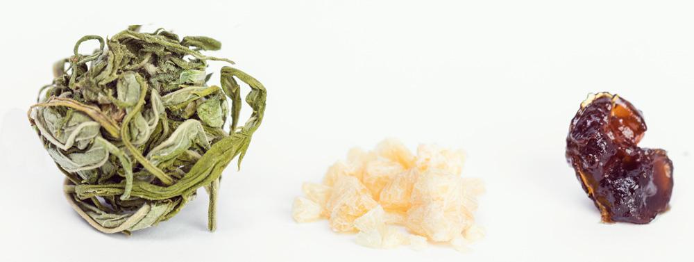 Concentrés cannabis terpènes extraction huile cbd marijuana médicale