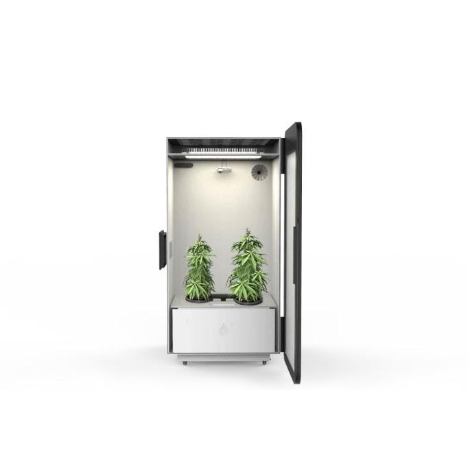 growbox boîte culture plantes