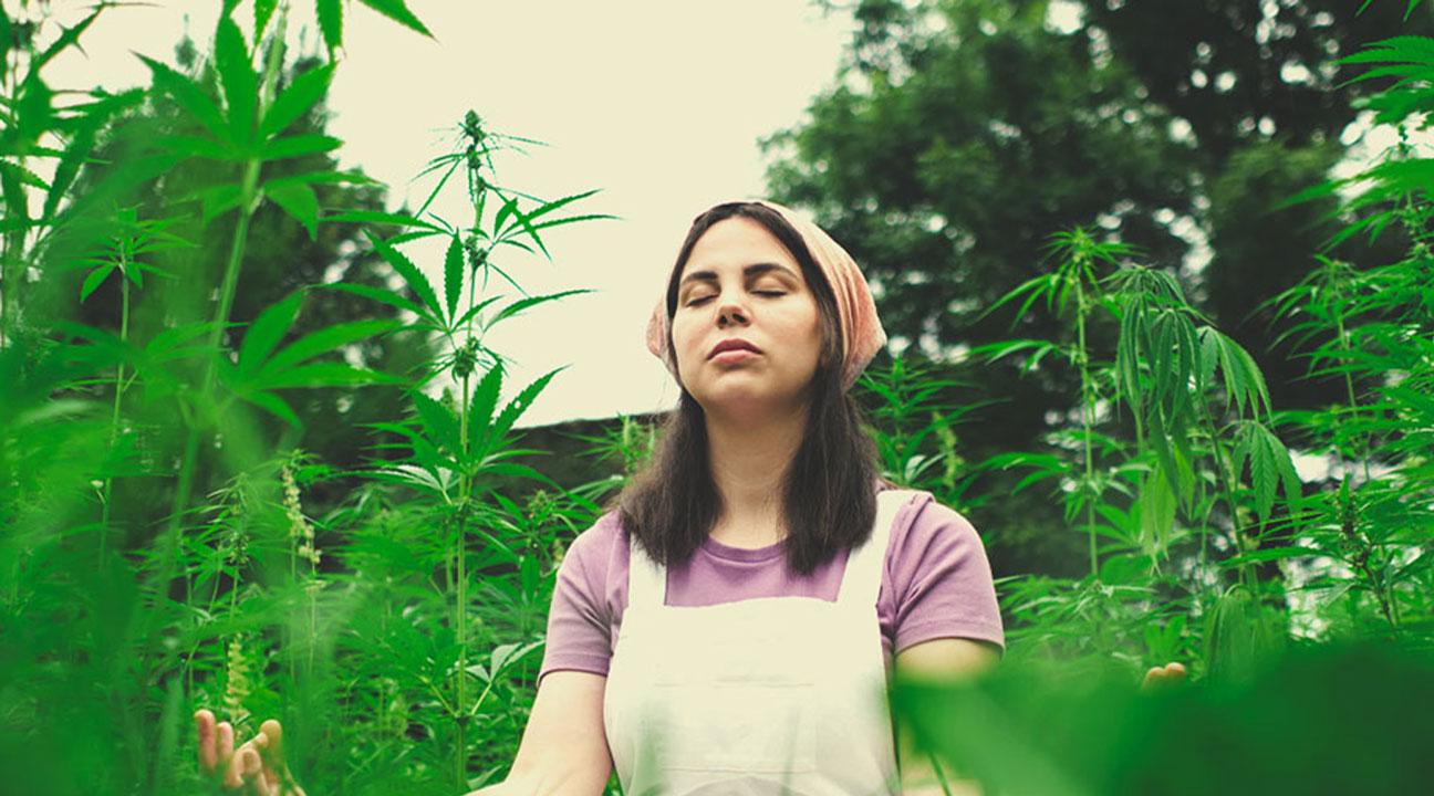 Pouvez-vous nous partager une pratique que nous pourrions employer pour méditer avec le cannabis?