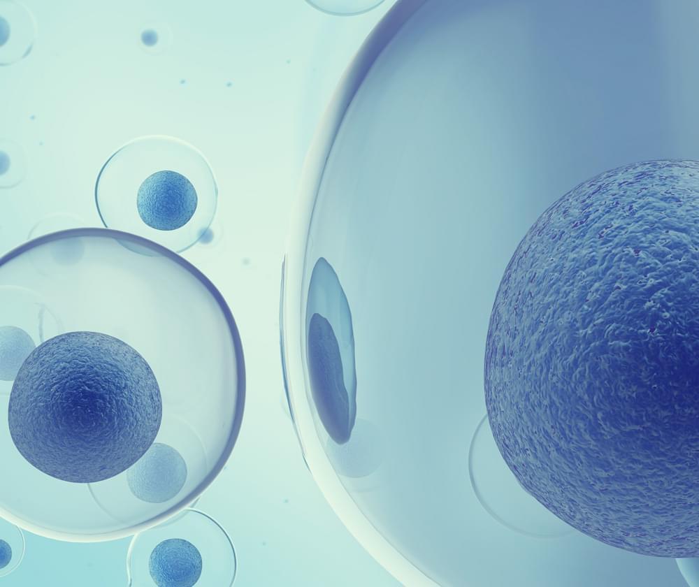 Résistance aux antibiotiques du cannabis MRSA infection bactérienne