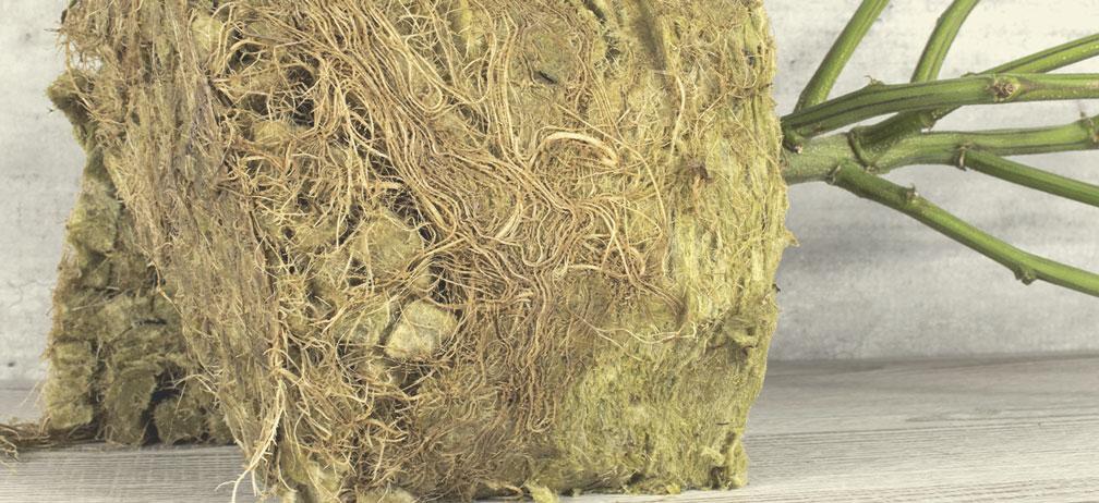 Peut-on composter la laine de roche ?