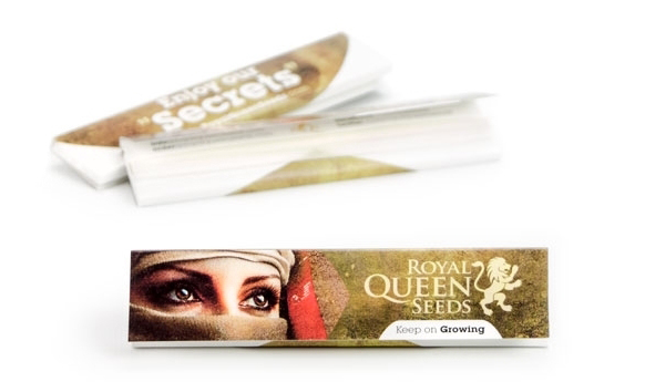 papier à rouler cannabis ginder royal queen seeds