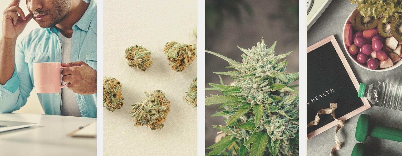 Comment arrêter de fumer de la weed ou réduire sa consommation de cannabis