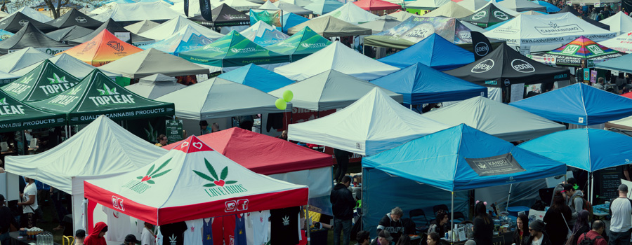 Norml legalization cannabis