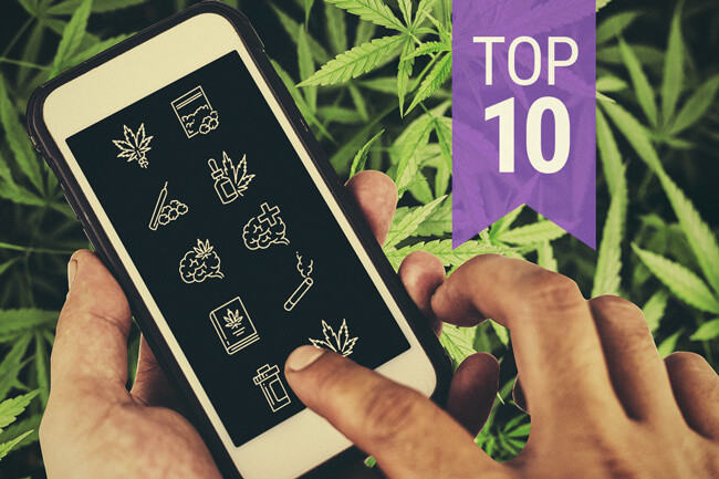 High There, une appli de rencontre pour les fumeurs de weed - NEON
