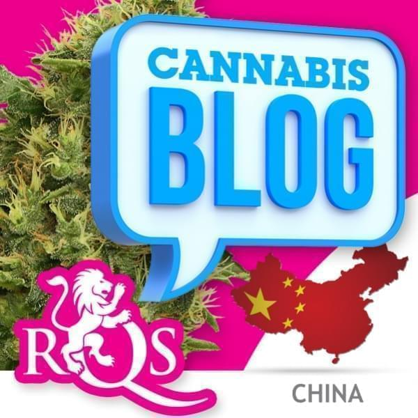 Cannabis en Chine
