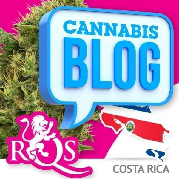 Cannabis au Costa Rica