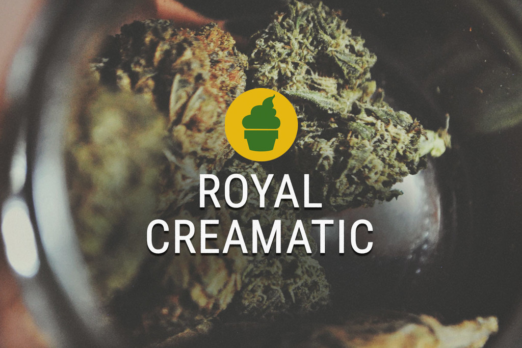 Royal Creamatic Smoke Report