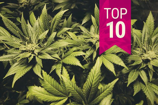 Top 10 des indices pour 2020