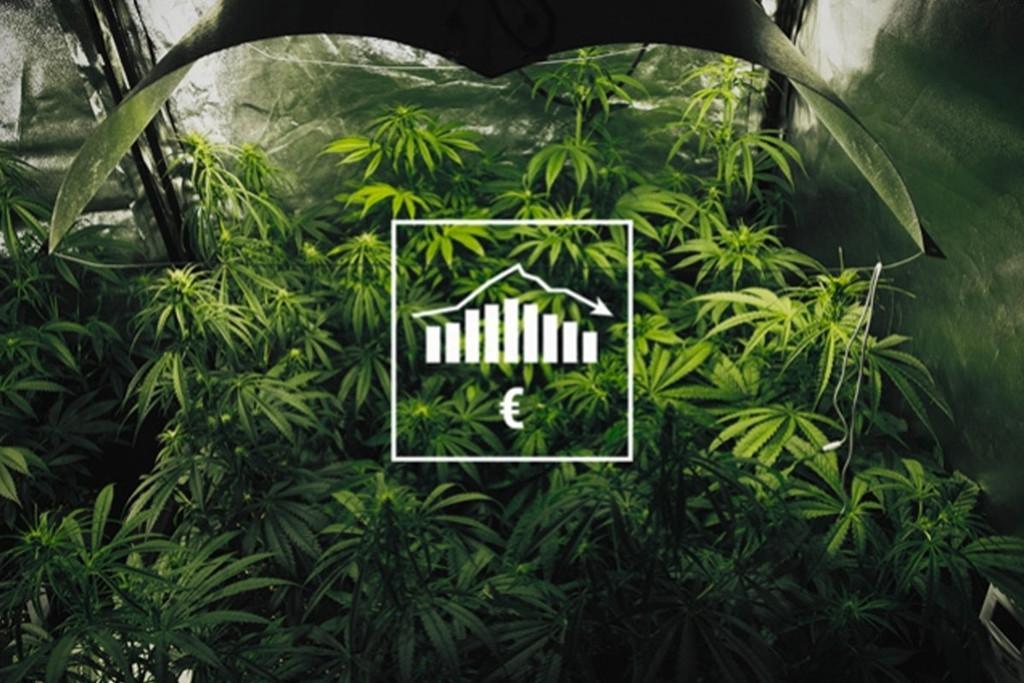 Comment Cultiver De La Weed Avec Un Petit Budget, En Intérieur Et ...