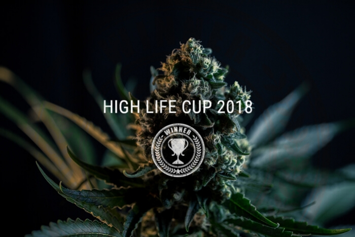 Royal Queen Seeds Vainqueur De La Highlife Cup 2018