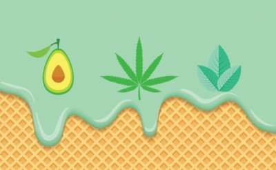 site de rencontre fumeur cannabis)